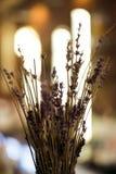 Diseñe el ramo de flores secadas en el interior, clouseup Imágenes de archivo libres de regalías