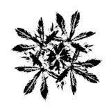 Diseño abstracto de la hoja de la salpicadura Diseño de la ilustración Fotografía de archivo