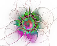 Diseño abstracto del fractal Flor surrealista en blanco Imagenes de archivo