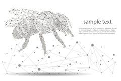 Diseño abstracto del logotipo de la abeja el marco polivinílico bajo aisló negro en el fondo blanco El concepto de insectos consi Imagen de archivo libre de regalías
