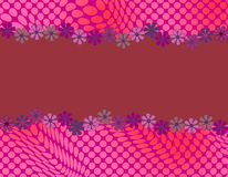 Diseño abstracto lindo con enmarcar de la margarita Fotos de archivo libres de regalías