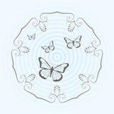 Diseño circular y mariposas  Fotos de archivo libres de regalías