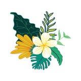 Diseño compuesto dibujado mano hermosa del follaje tropical de la flor libre illustration