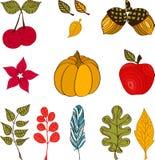 Diseño con los iconos y los objetos del otoño Imagen de archivo