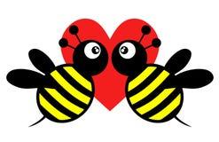Amor de la abeja Foto de archivo libre de regalías