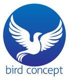 Diseño de concepto del pájaro del círculo Fotografía de archivo