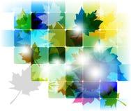 Diseño de concepto multicolor de la hoja de arce Foto de archivo