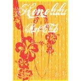 Diseño de Hawaii Imagen de archivo libre de regalías