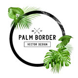 Diseño de hoja de palma tropical de la frontera Imagen de archivo