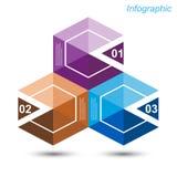 Diseño de Infographic para la graduación del producto Foto de archivo