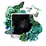 Diseño de la acuarela con los succulents y la foto, Fotos de archivo libres de regalías