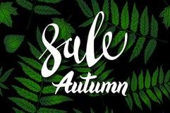 Diseño de la bandera de Autumn Sale, con las letras exhaustas de la mano, en un marco compuesto por las hojas esqueléticas pintad stock de ilustración