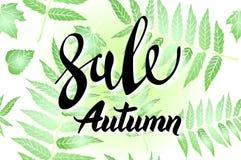 Diseño de la bandera de Autumn Sale, con las letras exhaustas de la mano, en un marco compuesto por las hojas esqueléticas pintad libre illustration