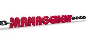 Diseño de la cadena de la gestión Imagenes de archivo