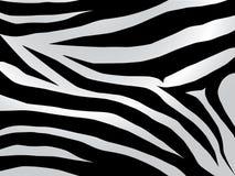Diseño de la cebra Imagen de archivo libre de regalías