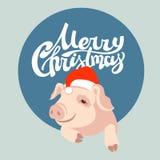 Diseño de la Feliz Navidad Tarjeta de felicitación cerdo plano ilustración del vector