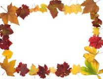 Diseño de la frontera de las hojas de otoño Imagen de archivo