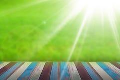 Diseño de la hierba verde Fotografía de archivo libre de regalías
