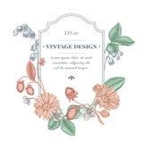 Diseño de la insignia con el calendula en colores pastel, lirio de los valles, fresa libre illustration