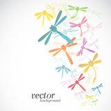 Diseño de la libélula en el fondo blanco Foto de archivo libre de regalías