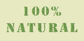 Diseño de la naturaleza de la ecología El 100% NATURAL Imágenes de archivo libres de regalías