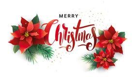 Diseño de la Navidad de ramas y de poinsetia del abeto stock de ilustración