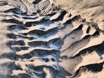 Diseño de la raspa de arenque en la arena fotografía de archivo libre de regalías