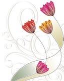 Diseño de la tarjeta de felicitación Fotografía de archivo