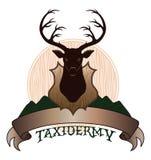 Diseño de la taxidermia libre illustration