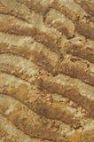 Diseño de la textura Foto de archivo libre de regalías