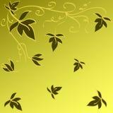 Diseño de las hojas Imagen de archivo libre de regalías