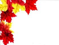 Diseño de las hojas de otoño Fotografía de archivo
