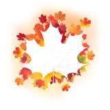 Diseño de las hojas de otoño Imágenes de archivo libres de regalías