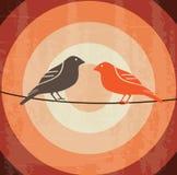 Diseño de los pájaros Imagenes de archivo