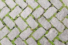 Diseño de piedra del pavimento de la textura del piso de la hierba Foto de archivo libre de regalías