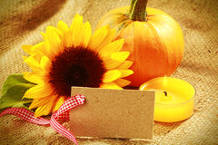 Diseño de tarjeta colorido de la acción de gracias o del otoño Fotografía de archivo