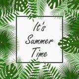 Diseño de tarjeta de fichar del verano con - las hojas de palma tropicales, la hoja de la selva, las plantas exóticas y el marco  Imagen de archivo libre de regalías