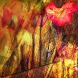 Diseño de tarjeta floral del Grunge Foto de archivo