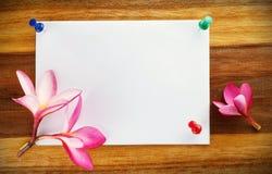 Diseño de tarjeta, frangipani (plumeria) Foto de archivo libre de regalías