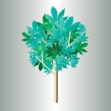 Diseño 7 del árbol Imagen de archivo