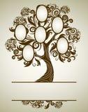 Diseño del árbol de familia del vector con los marcos Imagen de archivo libre de regalías