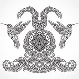 Diseño del arte del vintage con el colibrí y los elementos decorativos de la caligrafía Adorno victoriano stock de ilustración