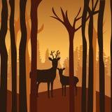 Diseño del bosque, ejemplo del vector ilustración del vector