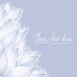 Diseño del espacio en blanco del loto azul Foto de archivo libre de regalías
