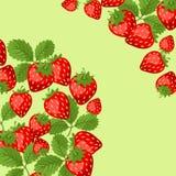 Diseño del fondo de la naturaleza con las fresas Fotos de archivo