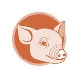 Diseño del icono del cerdo Foto de archivo