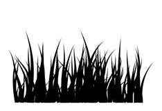 Diseño del icono del símbolo del vector de la silueta de la hierba Imagen de archivo libre de regalías