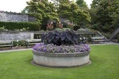 Diseño del jardín Imagen de archivo