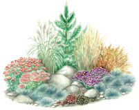 Diseño del jardín del jardín de rocalla stock de ilustración