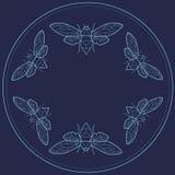 Diseño del marco del vintage con los insectos Línea arte plana Foto de archivo libre de regalías